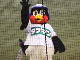 130714対広島 01.JPG