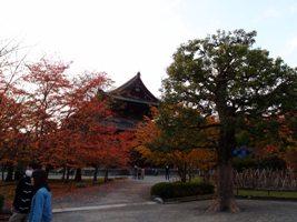 131116京都 087.JPG