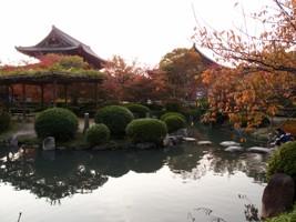 131116京都 100.JPG